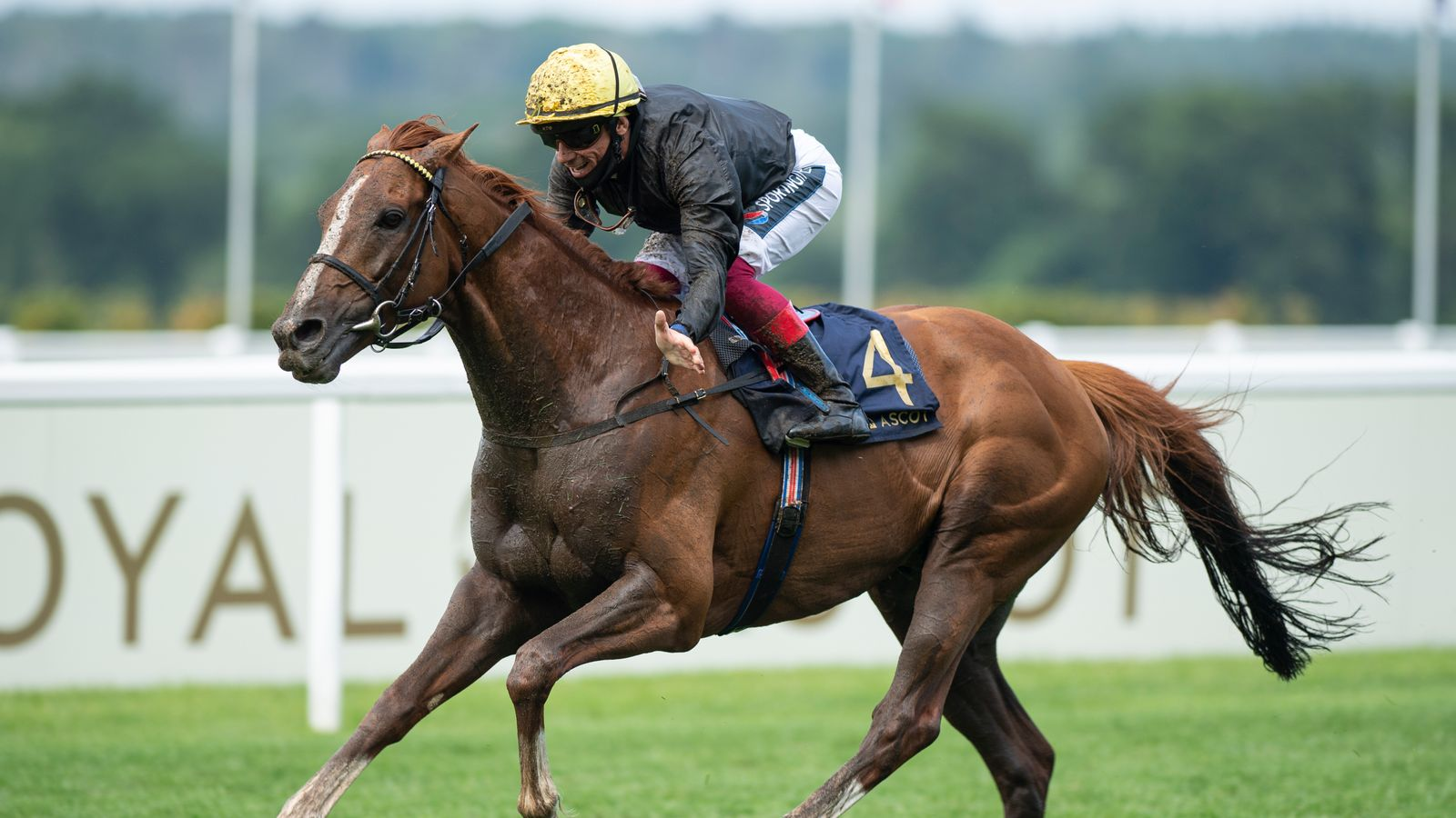 Stradivarius ready to bid for history at Goodwood on Tuesday