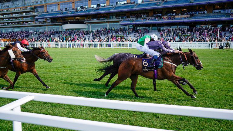 Reshoun edges a thrilling Ascot Stakes