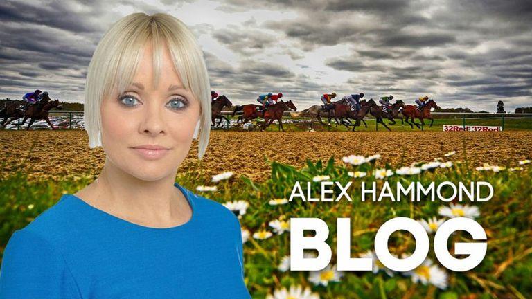 Alex Hammond blog