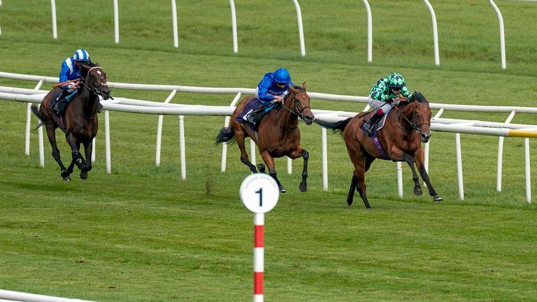 Matthew Flinders sprints away to win at Doncaster in September