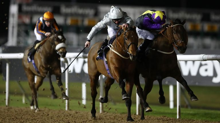 Mildenberger, in grey, beats Rainbow Dreamer at Wolverhampton in January