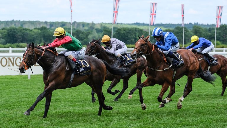 Cox's 150-1 Coventry Stakes winner Nando Parrado is set to return to Royal Ascot in the Jersey Stakes this year