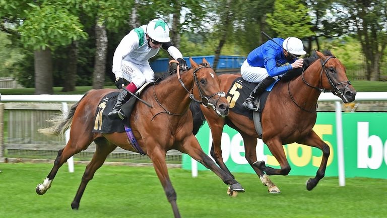 Naval Crown, in blue, is set to drop back in trip for the Jersey Stakes at Royal Ascot