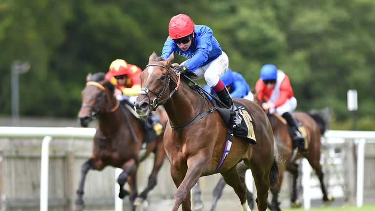 Stunning Beauty was officially declared as pulled-up at Ascot after Silvestre de Sousa was unable to remove the horse's hood before the start
