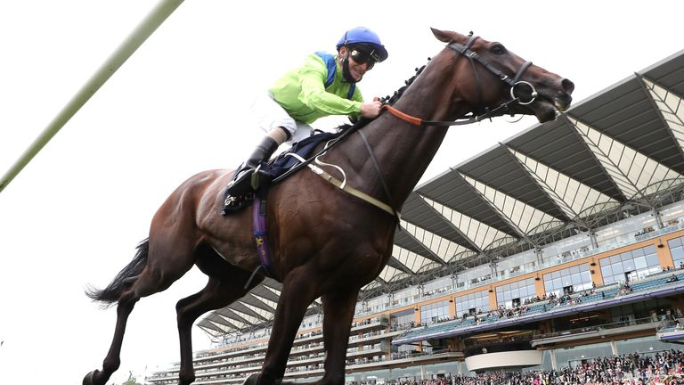 Subjectivist wins the Ascot Gold Cup
