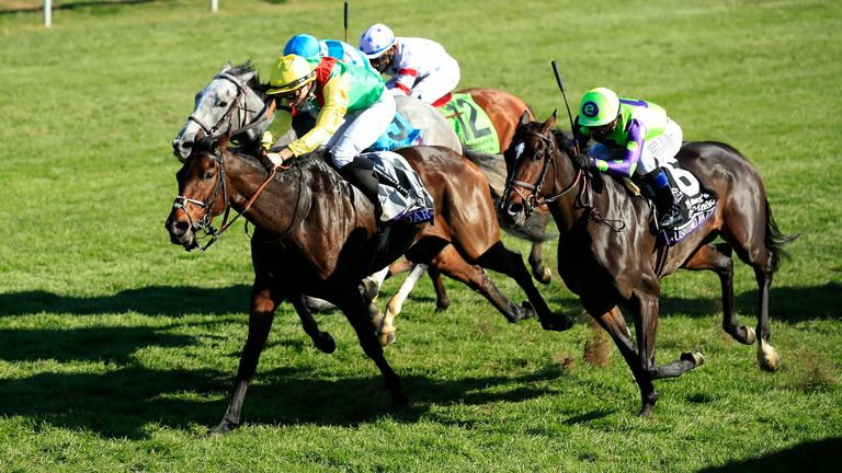 Audarya - will handle ground in Nassau Stakes