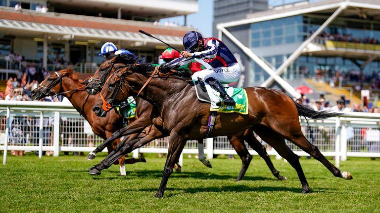 Sean Levey riding Happy Romance (dark blue cap) wins The bet365 Hackwood Stakes