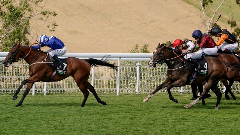 Maydanny wins the Unibet Golden Mile