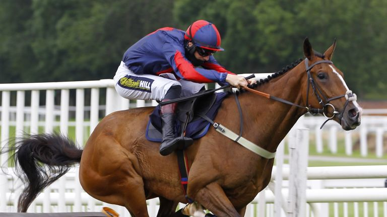 Captain Tom Cat is the early market favourite after winning each of his first three starts over fences