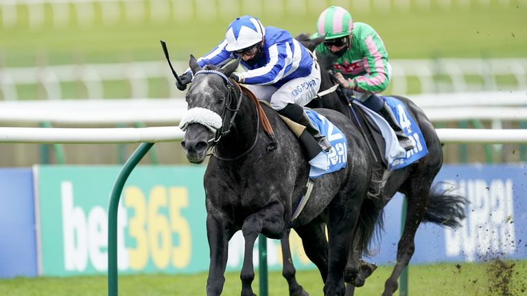 Happy Power's last victory came in the Challenge Stakes at Newmarket in October