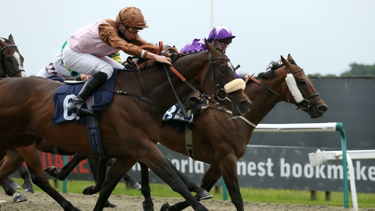 Mohareb (near side, pink and brown) won at Lingfield two weeks ago