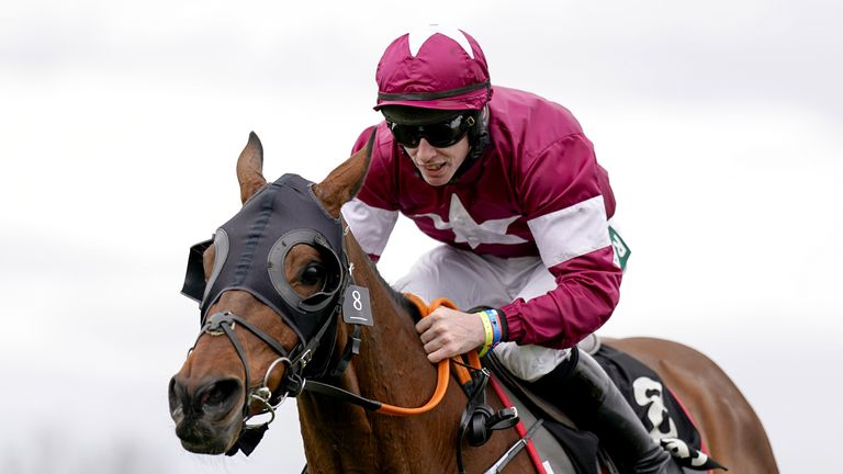 Two-time Grand National winner Tiger Roll has been given a 'speculative entry' for Galway