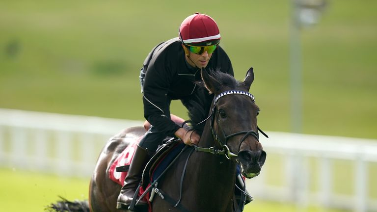 Mystery Angel gallops at Epsom before her run in the Oaks