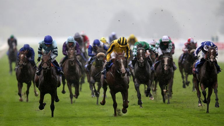 Sonnyboyliston (yellow) just holds off Quickthorn (left) to win the Sky Bet Ebor at York