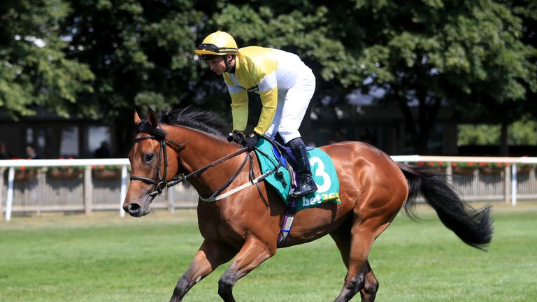 Staxton returns to defend his Great St Wilfrid title at Ripon
