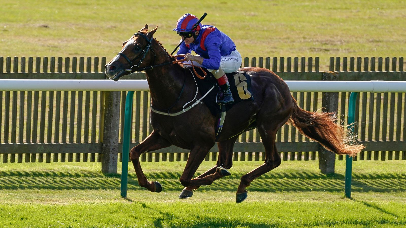 Staying stalwart Nayef Road makes class count at HQ