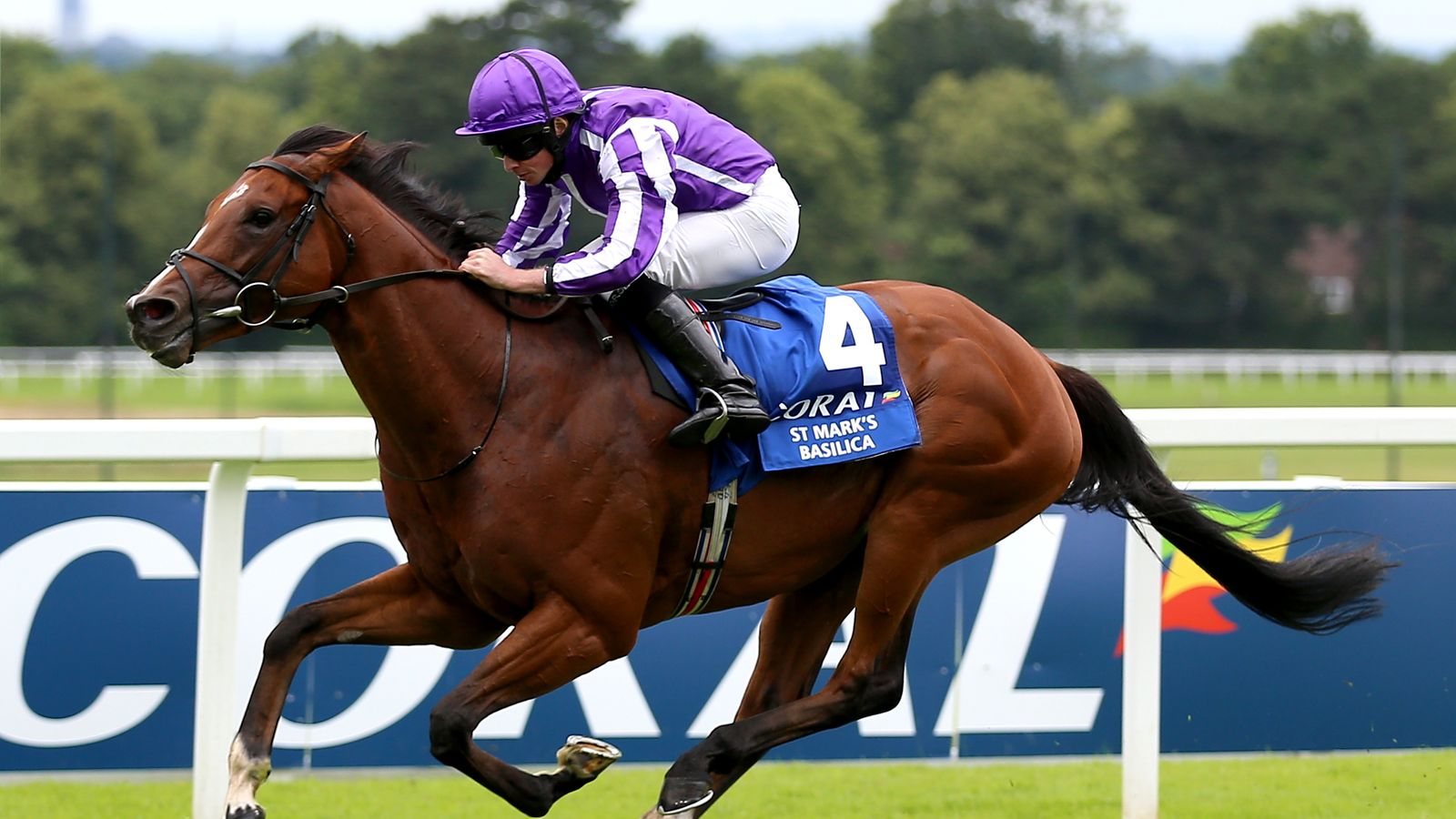 St Mark's Basilica retired: Aidan O'Brien hails three-year-old one of best ever as star heads to stud