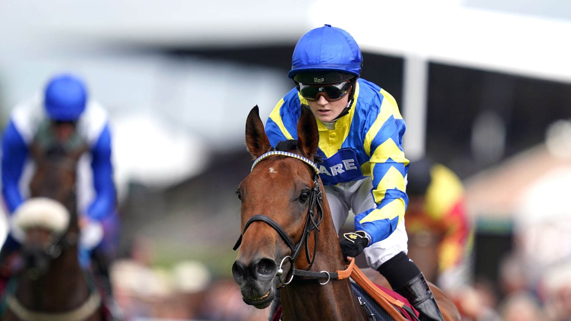 Ascot rematch for star stayers