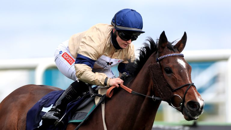 Doyle heads to Sweden to ride Outbox in the Stockholm Cup International