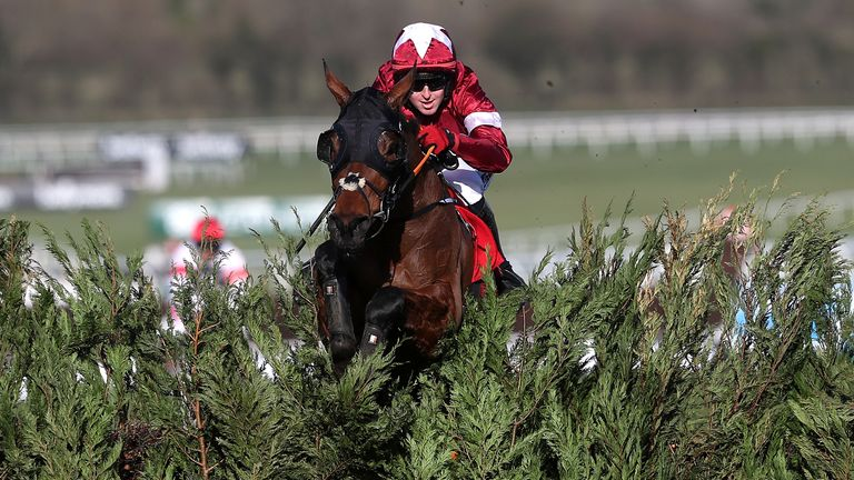 Six horses previously trained by Elliott won at this year's Cheltenham Festival, including two-time Grand National winner Tiger Roll
