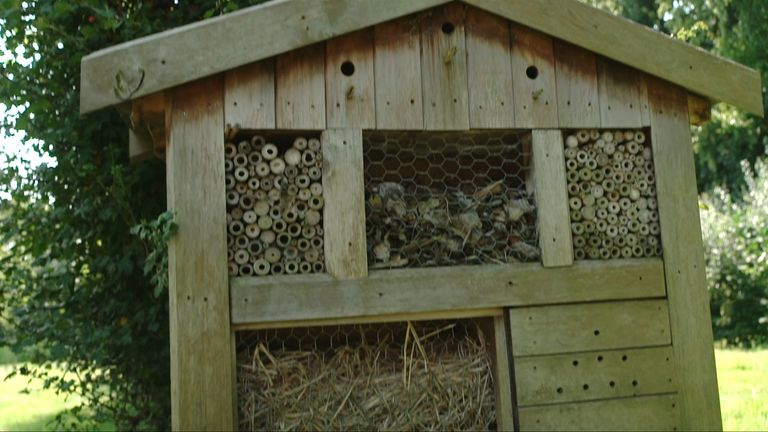 Tottenham have 'bug hotels' throughout Hotspur Way to encourage wildlife