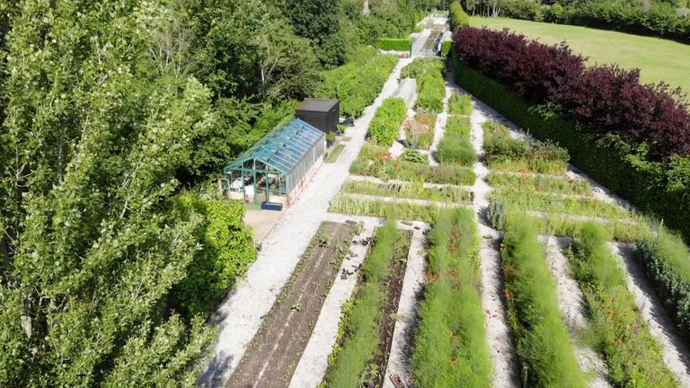Tottenham grow their own fruits, vegetables and more in their kitchen garden