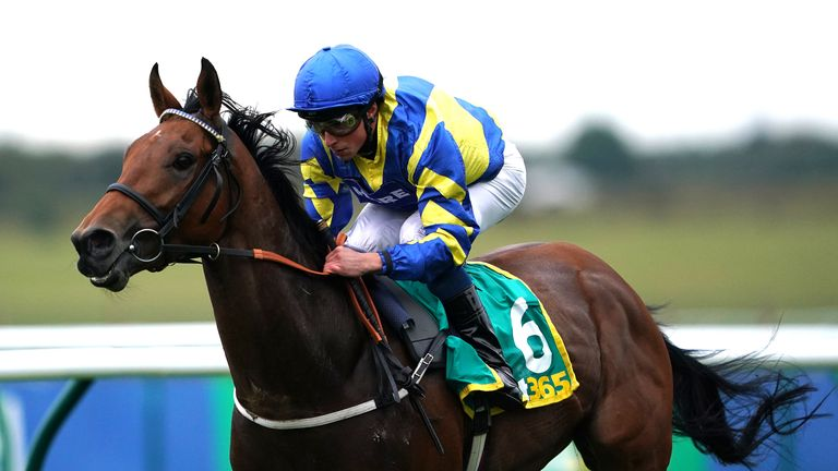 Trueshan has been withdrawn from the Doncaster Cup field due to the ground conditions