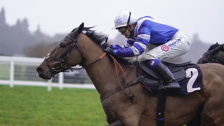 Knappers Hill looks an exciting novice hurdler for the Paul Nicholls team
